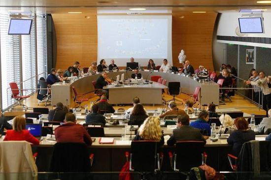 Dernier Conseil municipal Vuillemot 02