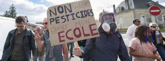 Une manifestation contre l'utilisation des pesticides, à Listrac-medoc, le 8 octobre 2017. (MAXPPP)