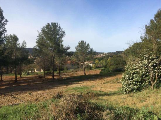 Le terrain concerné, tel qu'il est visible actuellement depuis le chemin Fernand-Bonifay Photo Ma. D.