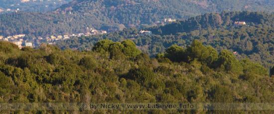 Réouverture des Accès au Massifs forestiers du Département du Var à parir du 04/12/2019