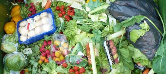 Gaspillage alimentaire: Extension de la Loi au Secteur de la Restauration collective privée et aux Industries agroalimentaires